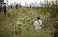 Walking through the weeds on The High Line.